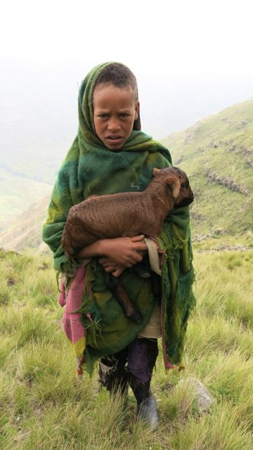 Ethiopian herd boy with newly born goat