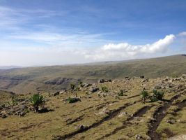 Simien Views-048